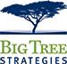 big-tree-logo-no-tag